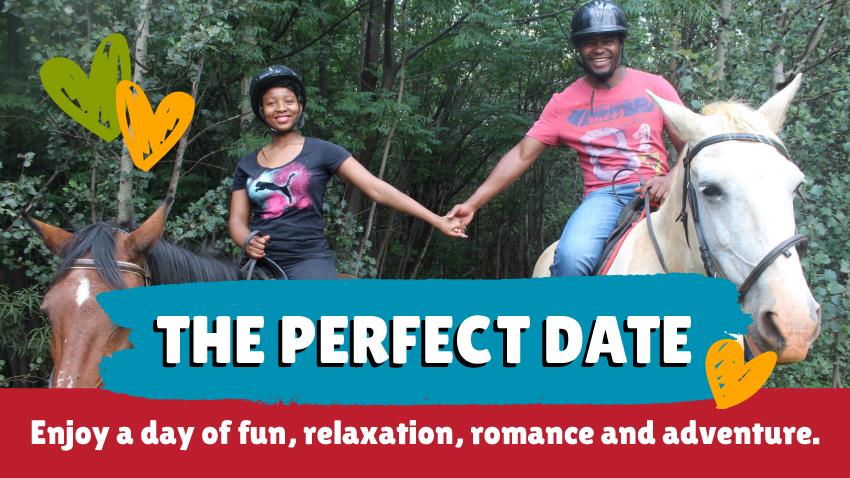 Saddle creek - Perfect Date